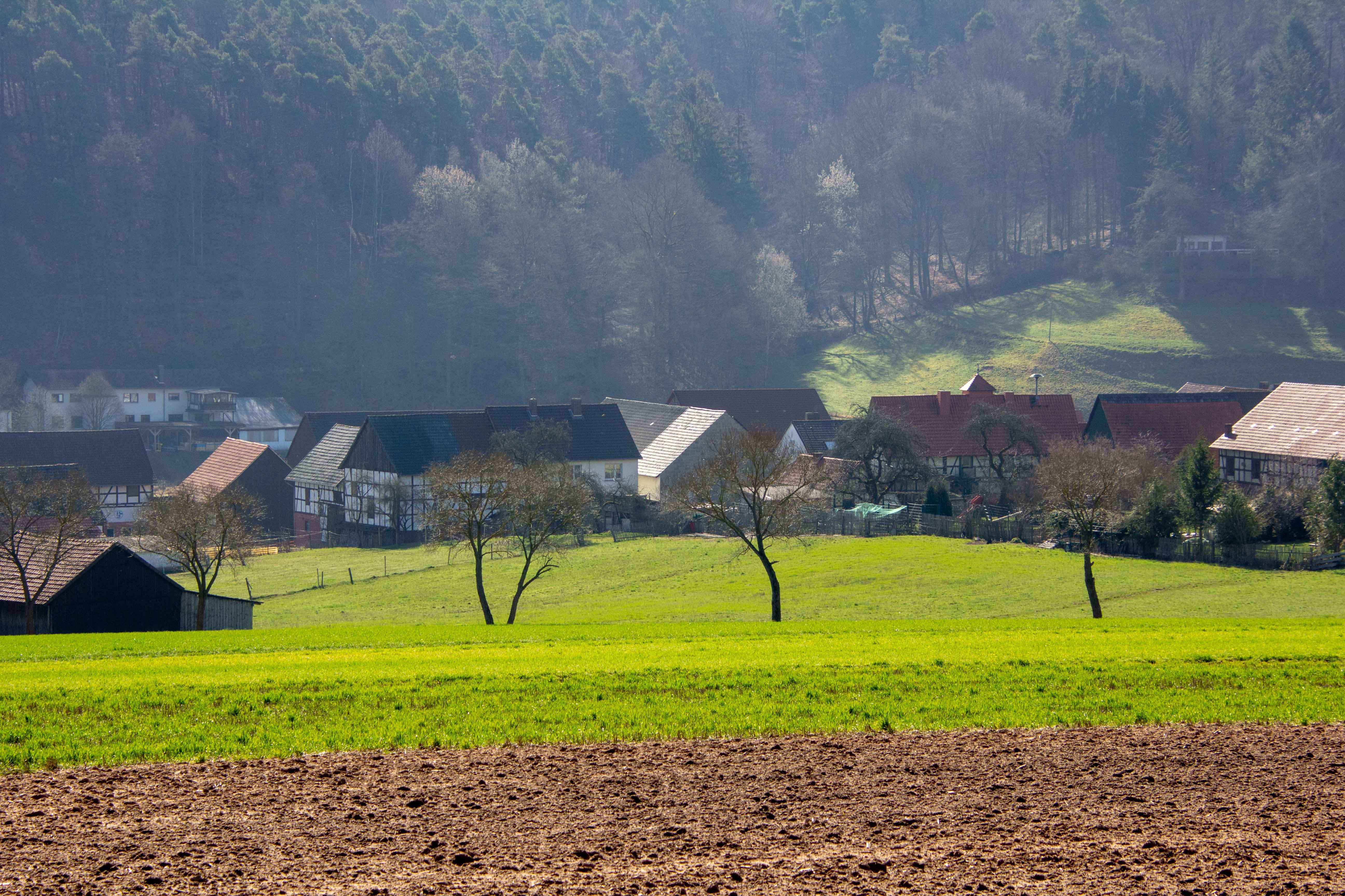 Frühlingsimpressionen um Gershausen 2019